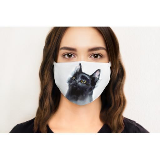 Cat 3 Face Mask