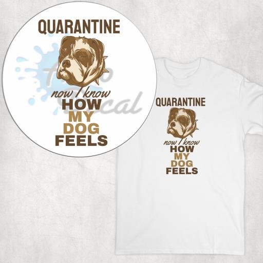 Quarantine Now I know how my Dog Feels DTG Clothing