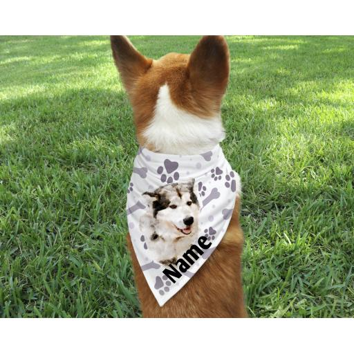 Alaskan Malamute Personalised Dog Bandana